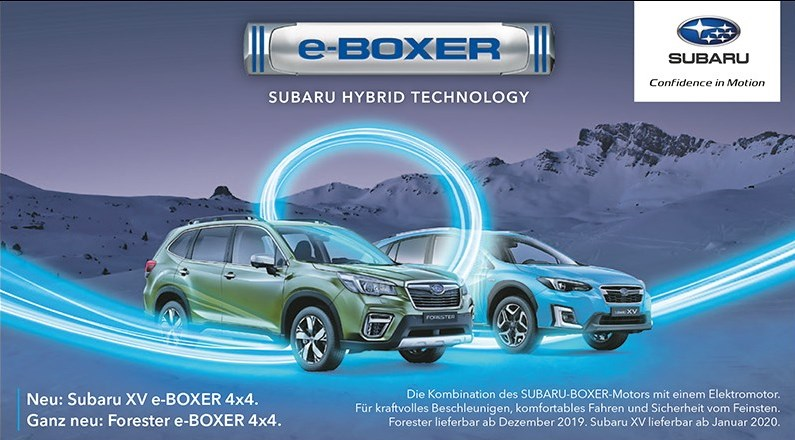 Website eboxer xv forester 6sp 4c de